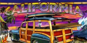 FREERIDE SURF CAMP CALIFORNIA